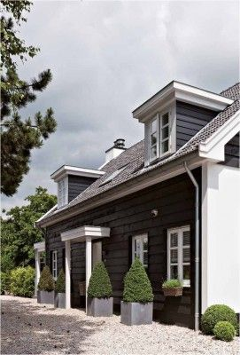 Black painted shingles + boxwood