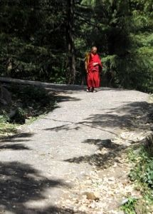 Dharmsala Mcleodganj with Triund  Tour Package in 7 days  This tour package of Dharmsala. Mcleodganj and Kangra  covers the area in full detail and helps you relax close to nature. If  you want to enjoy the beauty of peaceful mountains, some beautiful natural and man made attractions and company of simple mountain folk or even solitude, this tour is one of the best choices.
