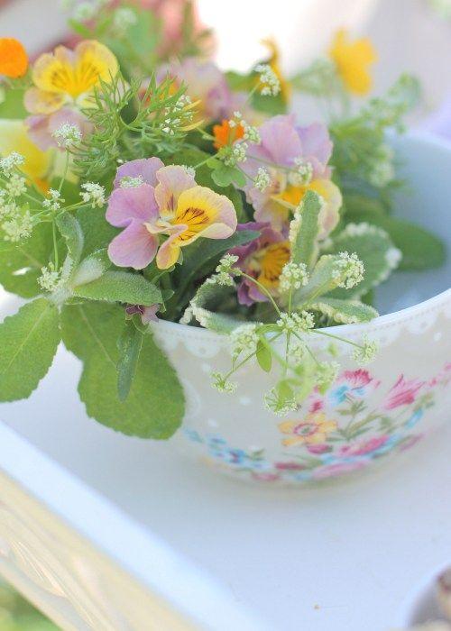 Leuke en regelen een kleine bloem in cafe au lait kom