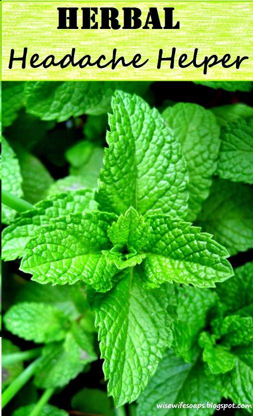 How to Make an Herbal Headache Helper with Essential Oils