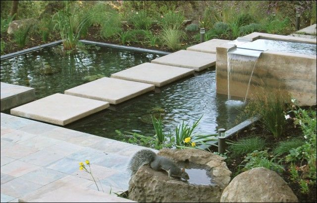 modern pond idea - terraced levels w/ gentle spill over