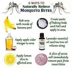 Tegen muggenbeet