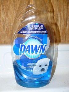 dawn dish soap coupons.com
