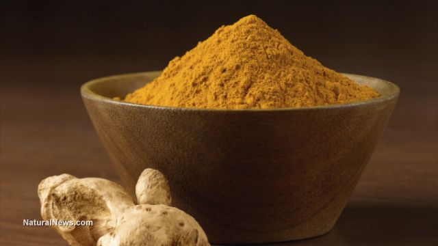 """(NaturalNews) Though it may be unfamiliar to many people, those who know about turmeric are well aware of its health benefits. In fact, they know that just one teaspoon per day of this """"Queen…"""