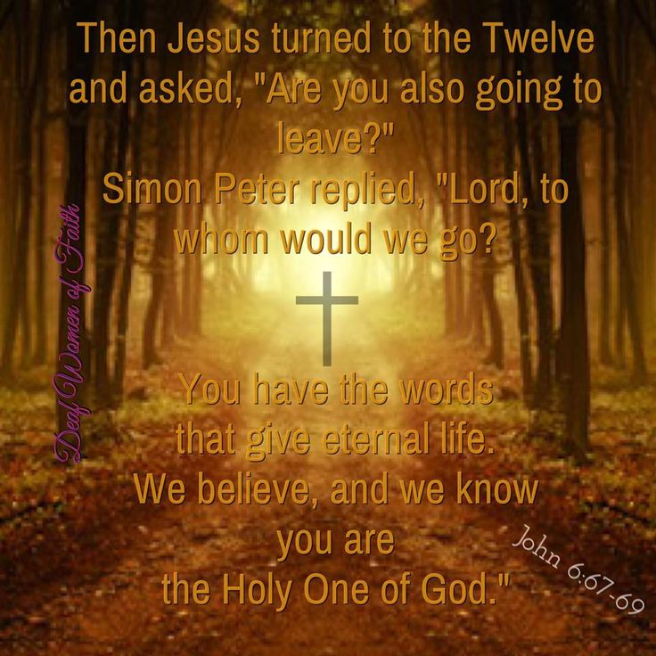 Twenty-First Sunday in Ordinary Time 'Then Jesus said to the Twelve, 'What about you, do you want to go away too?' Simon Peter answered 'Lord, who shall we go to? You have the message of eternal life, and we believe; we know that you are the Holy One of God'' John 6:67-69