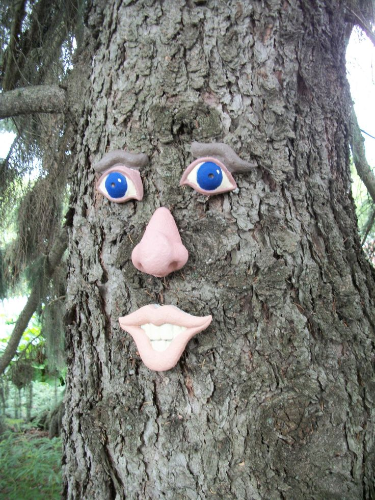 https://flic.kr/p/WzLTpm | Treeman. | Quite a few years ago my Gardening Partner put this silly face on the big spruce tree. It had faded badly so I painted it. I have to laugh everytime I see it :)