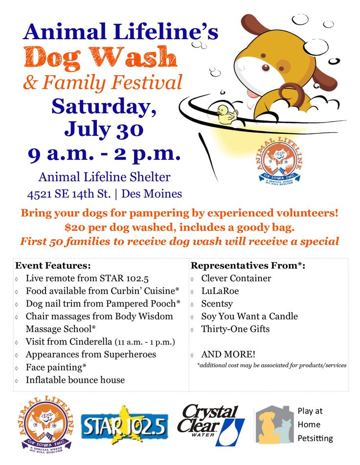 Pin on Animal Lifeline of Iowa FUNdraising Events!