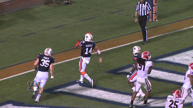 Auburn vs Georgia 2013 Highlights