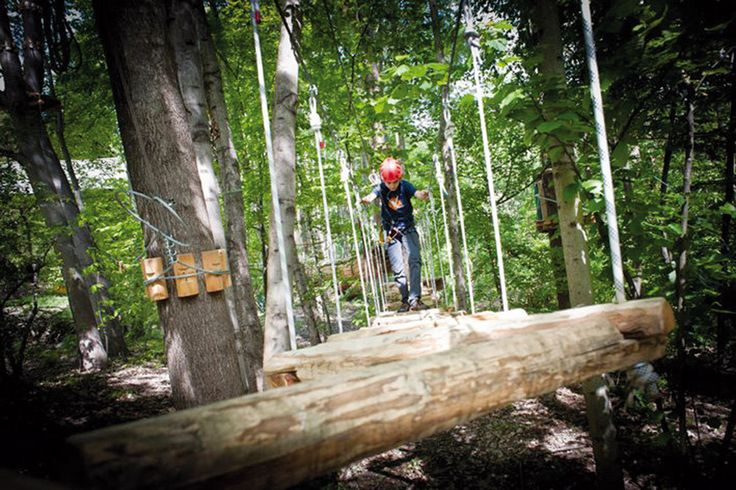 Sei i percorsi avventura tra cui scegliere, a seconda dell'età, dell'altezza e del livello di abilità raggiunto sugli alberi: baby, junior 1, junior 2, famiglia, avventura, sportivo.