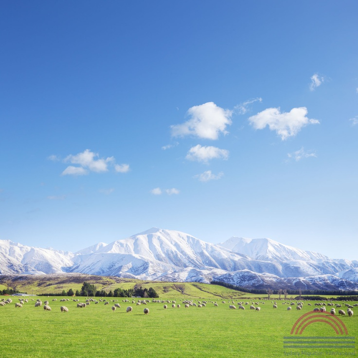 www.newzealand-migration.de   auswandern neuseeland & visum neuseeland - Den Traum wahr machen