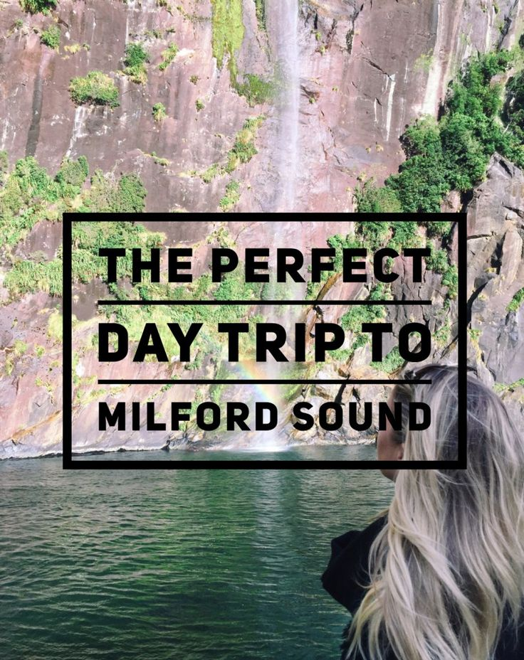 I have to tell you guys about this day while it's still fresh in my mind… We took a trip to a truly breathtaking place. Milford Sound has quickly become one of the top 10 greatest place…