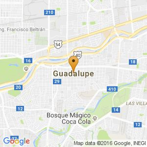 Vendo perrita Chihuahua | Guadalupe | Vivanuncios | 121055327