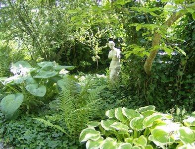 Die besten 17 ideen zu schattengarten auf pinterest - Schattengarten gestalten ...