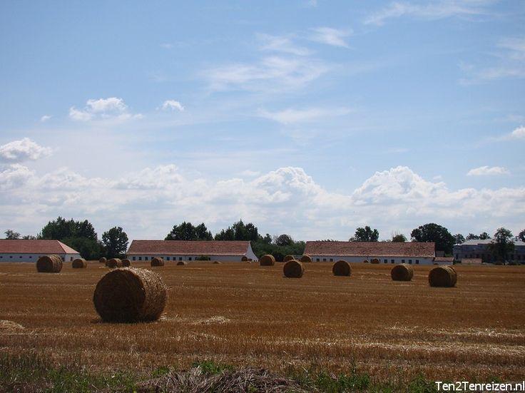 De enorme tarwevelden op de Poesta in Hongarije.
