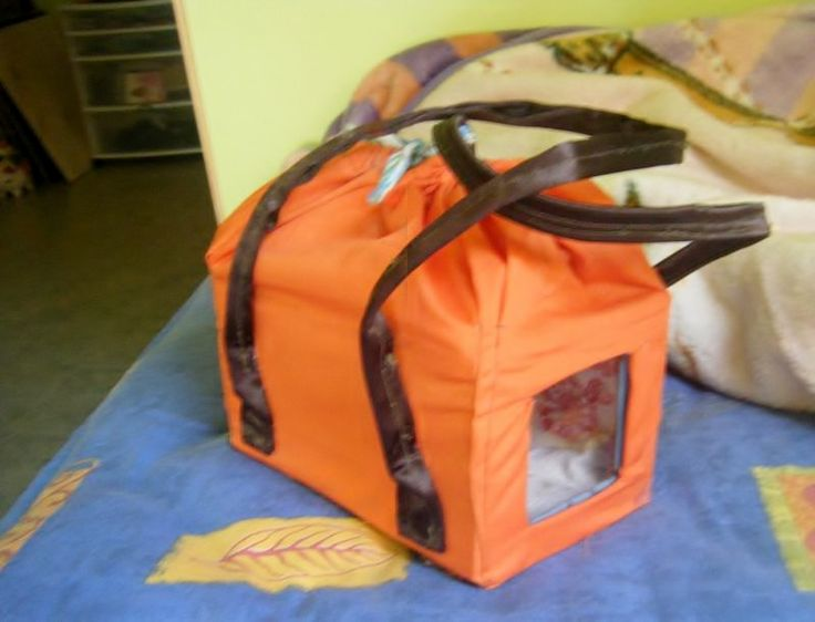 Diy rodent travel carrier guinea pig pigs for Guinea pig accessories diy