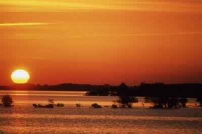 Une superbe destination automnale, l'Aube. la forêt d'orient et son espace faune