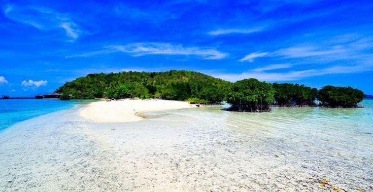 Pulau Salah Nama Mengintip Cantiknya Alam Bawah Laut di Sumatera Utara - Sumatera Utara