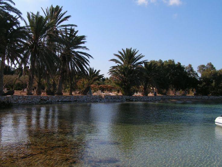 Agia Irini Beach in Paros