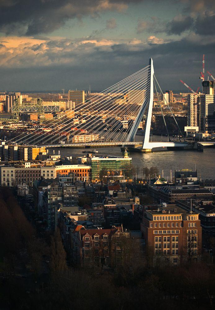 Erasmus Bridge in Rotterdam, The Netherlands.