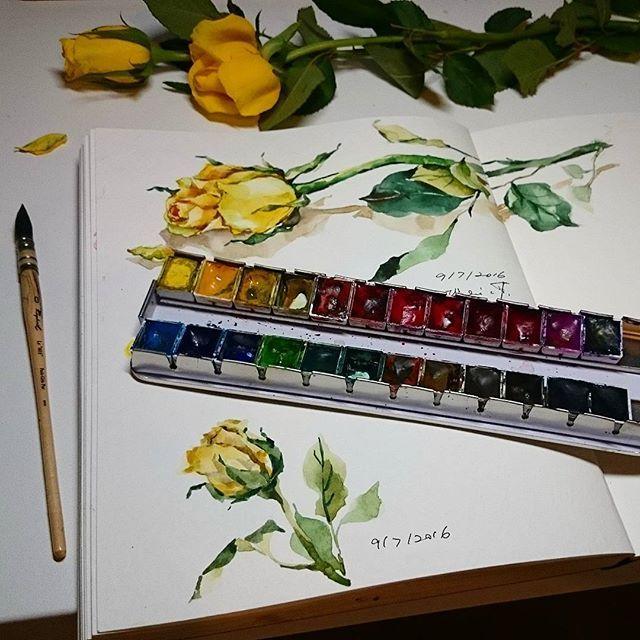 Yellow roses #watercolor #roses #strathmorepaper