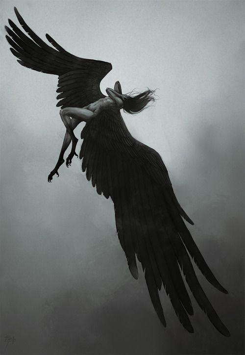 34 best Photo: Fallen angels images on Pinterest | Dark ...