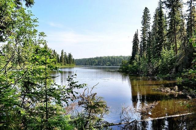Prince Albert National park Saskatchewan
