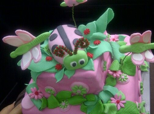 Ladybird cake for my little nieces 1st birthday!