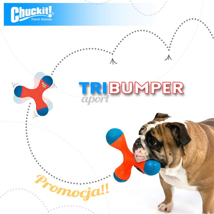 Chuckit TriBumper - trójnożny aport dla czworołapa. #zabawkadlapsa #aport #toys4dogs