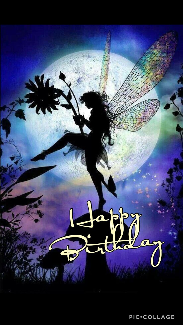 Lovely pic. Download on Gallery. Pls. Happy birthday