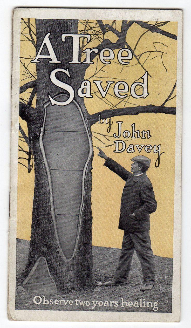 1914 A Tree Saved Tree Surgery from The Davey Tree Expert Co of Kent Ohio | eBay