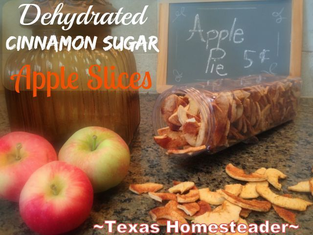 DEHYDRATED CINNAMON/SUGAR APPLE CHIPS – A Crispy Delicious And Healthy Snack For Your Family. Preserve The Harvest! #TexasHomesteaderTexas Homesteader