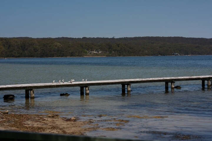 On the road to Batemans Bay