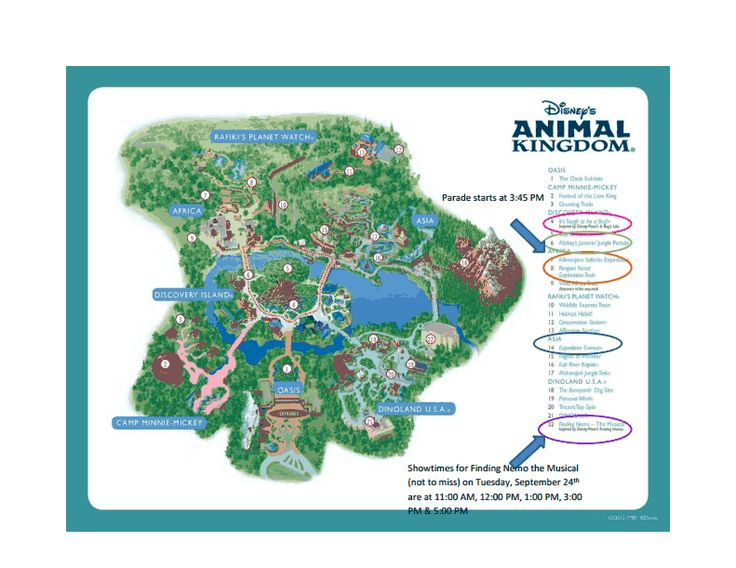 Figuring Out Your Disneyworld Must-Do's!  This is a great post with outlined maps and a good planning start for Newbie's! Be sure to leave us YOUR must-do comments over ON the BLOG! Enjoy!