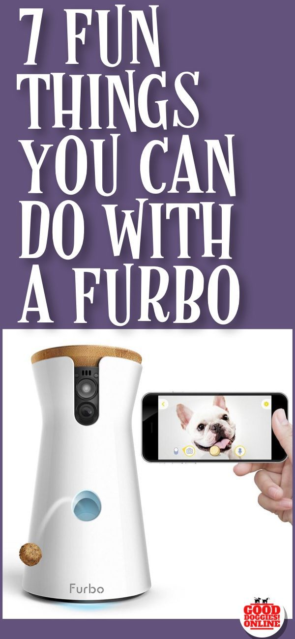 Have Fun And Fight Dog Loneliness With The Furbo Camera If Your Is Home Alone You Can See Talk Give Treats To