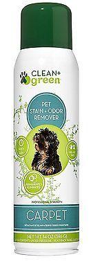 Dog Odor Removal Carpet