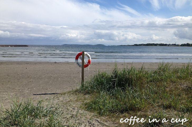 ringshaug beach (vestfold)