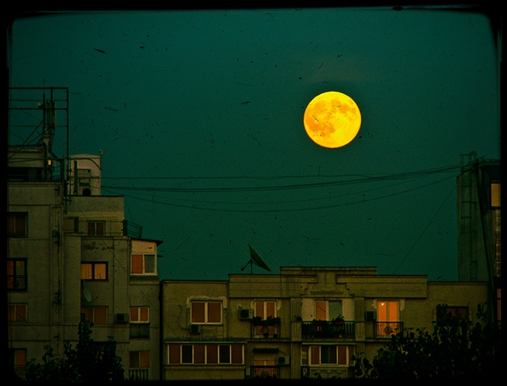 Night guardian! Bucharest – Home town  http://www.teoinpixeland.ro/travel/bucharest-home-town#pic48