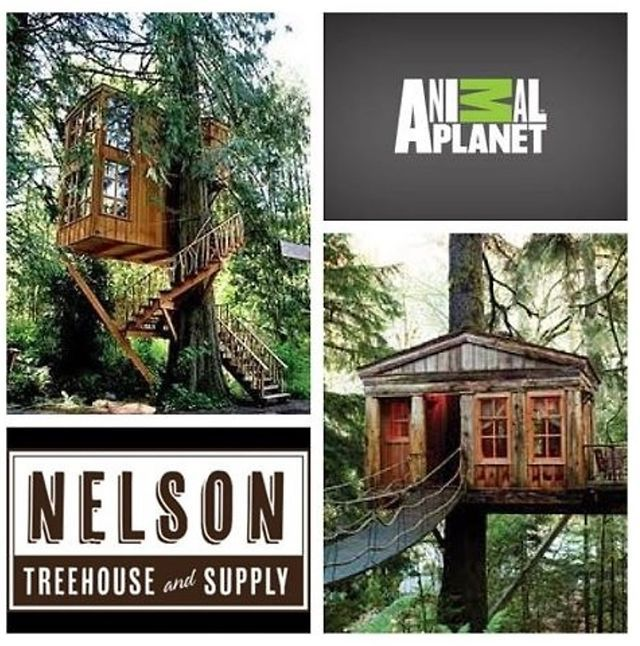 14 Best Images About Treehouses On Pinterest