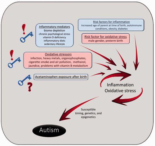 The Tylenol Autism link in babies and children.