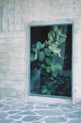 "French photographer Marion Berrin's stunning series called ""L'été se meurt"""