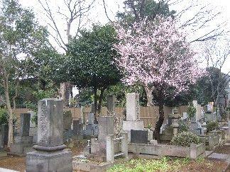 Tokugawa family graveyard tokyo_yanaka%20cemetary.JPG