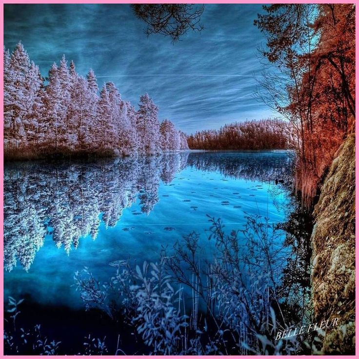 blue ice forest