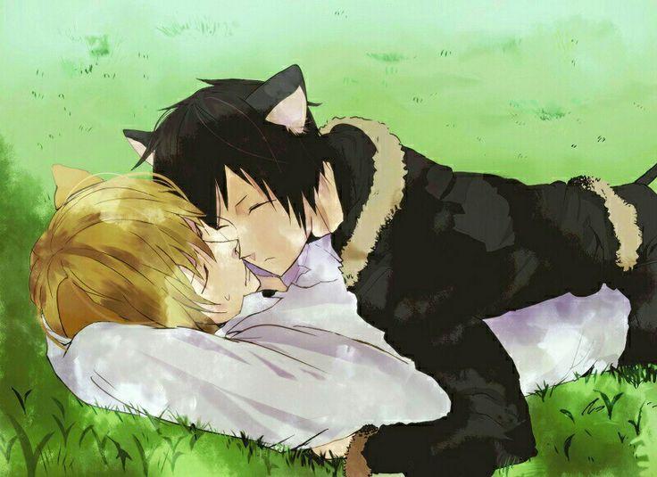 Cat Amp Dog 3 Izaya And Shizuo Durarara Pinterest