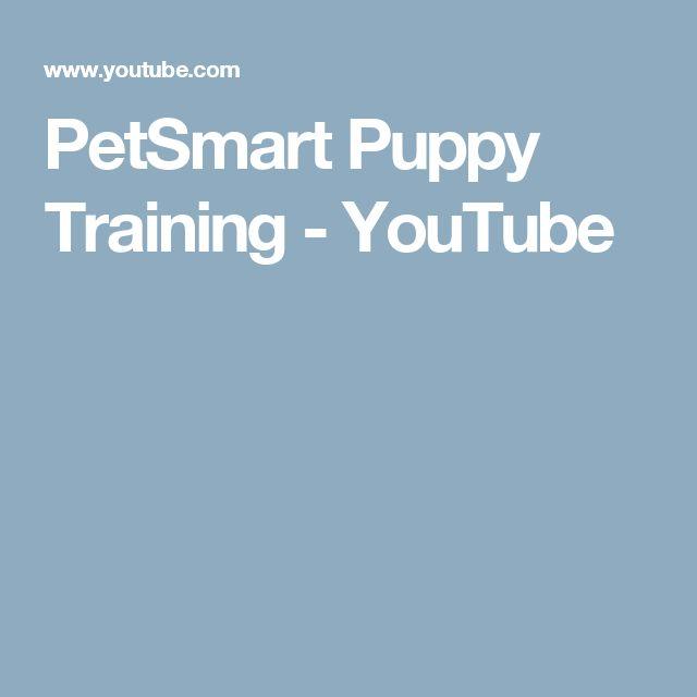 PetSmart Puppy Training - YouTube