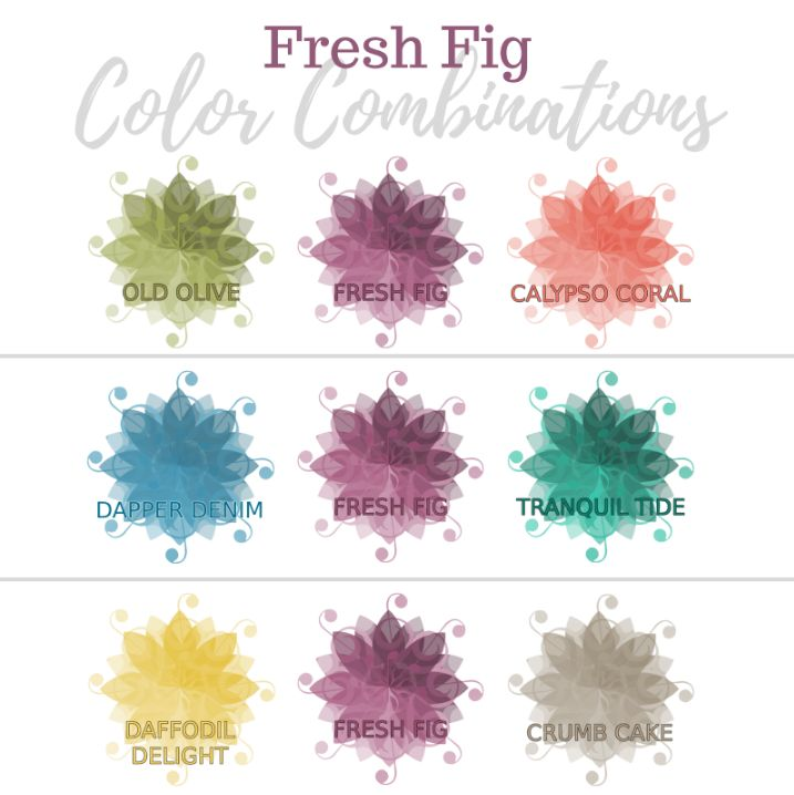 Valerie Martin Stampin Up In color 2017 2018 combinations ideas color story color schemes card making Fresh Fig