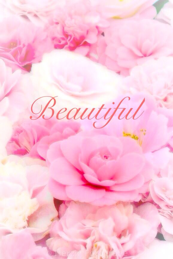 Happy 24th Birthday You Are A Beautiful Loving: Beautiful Wallpaper