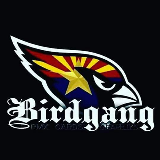 Arizona Cardinals #birdhang #Ladybirds
