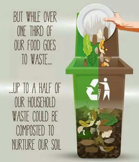 food waste in North America (on the consumer residential end) is shamefully staggering