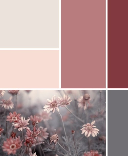 pretty color palette