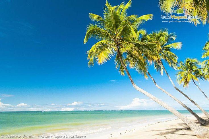 Brasil - foto-praia-lage-e-praia-patacho-em-alagoas-7581